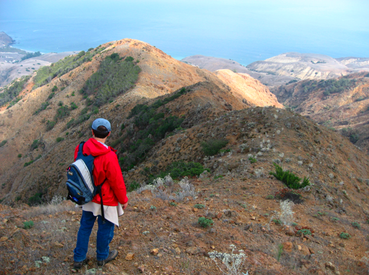 Hiking trails on Santa Cruz Island Pete Wardens blog