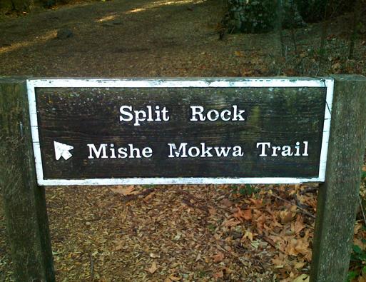 Mishemokwasign