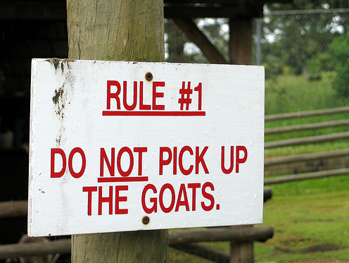 Goatwarning