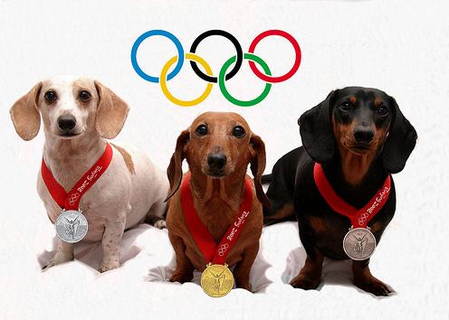 Dogolympics