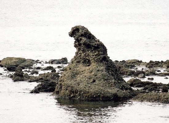 Godzillarock