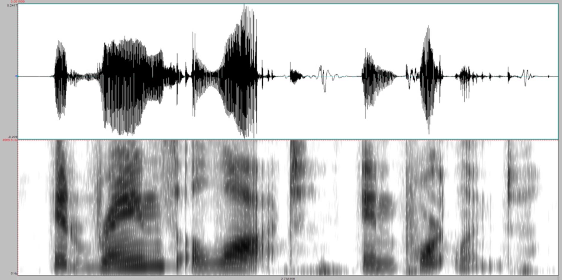 waveform.png